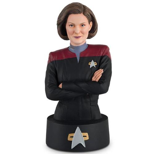 Eaglemoss Star Trek Busts Gallery
